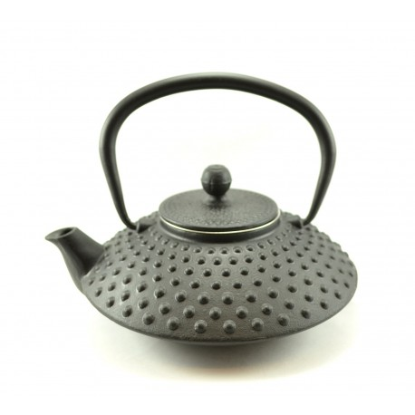 Japanese cast iron teapot