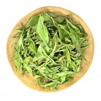 ชาหญ้าหวาน