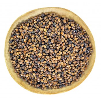 Barley Tea (Mugicha)